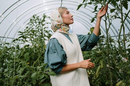 Sommerprojektet i haven: 3 tips til forbedringer